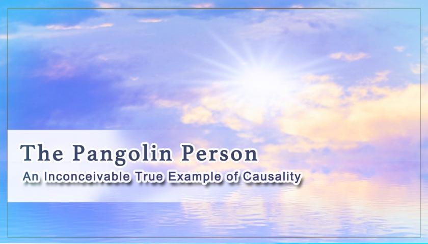 The Pangolin Person