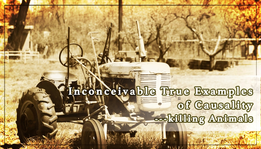 Inconceivable True Examples of Causality ---killing Animals