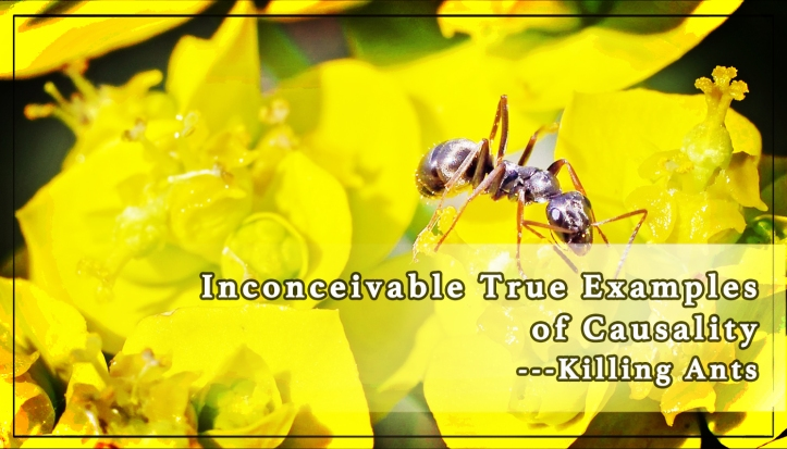 Inconceivable True Examples of Causality ---killing Ants