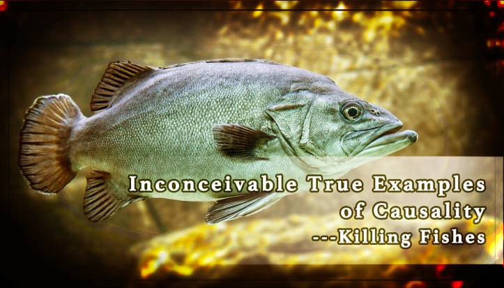 Inconceivable True Examples of Causality ---Killing Fishes